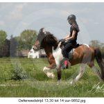 Oefenwedstrijd middag 13.30 tot 14 uur (130)